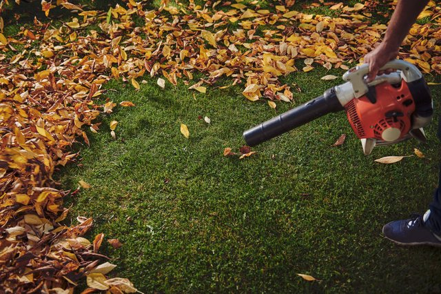 The best cordless leaf blowers 2021