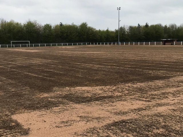 The pitch is taking shape.